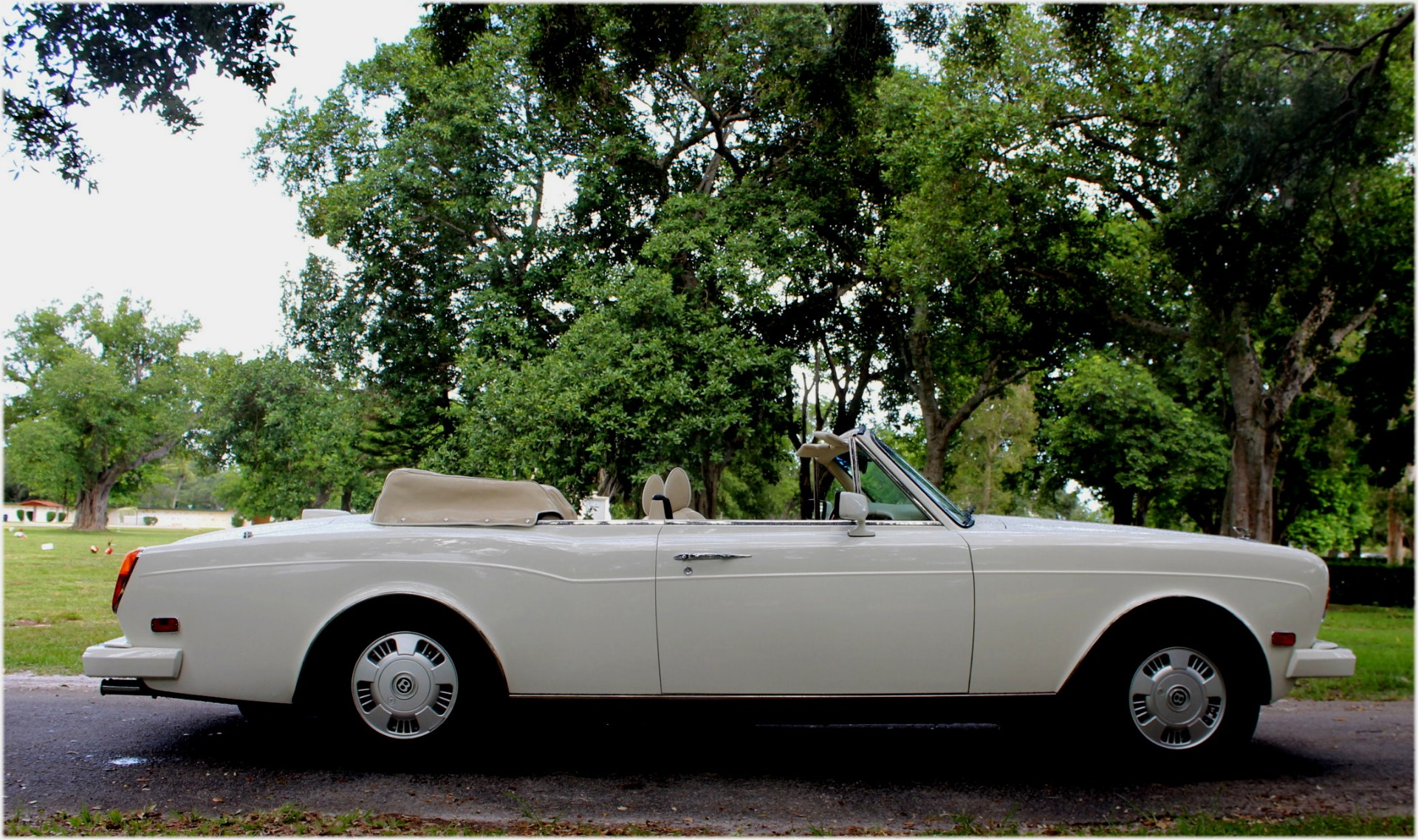 Used-1994-Bentley-Continental-Convertible