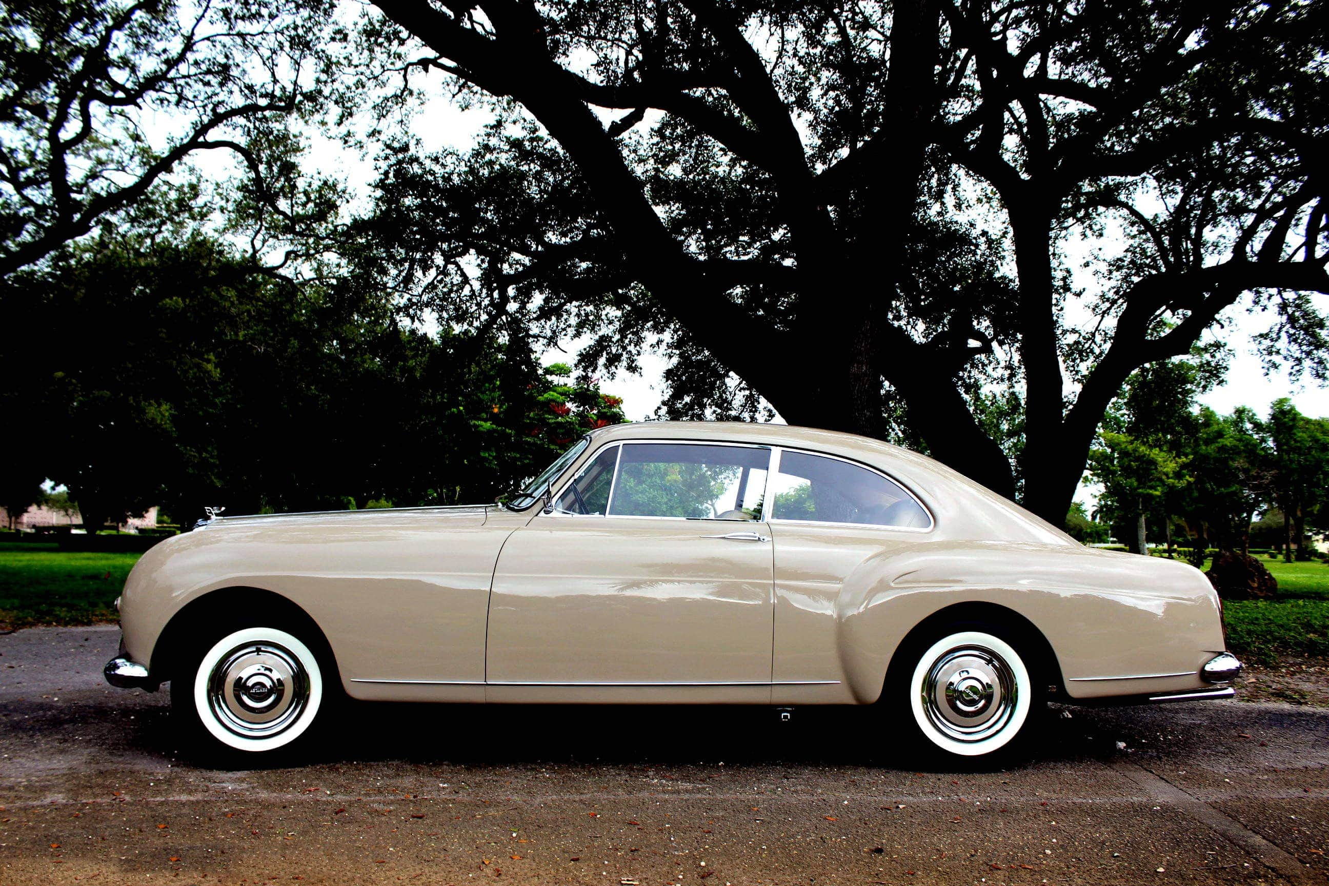 1956 Bentley S Continental Fastback - BC36LAF